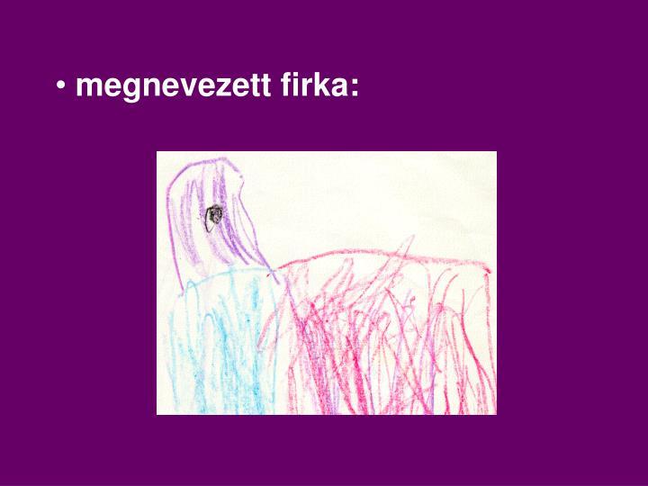 megnevezett firka: