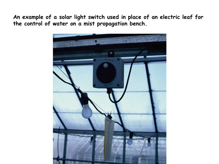 An example of a solar light switch used in place of an electric leaf for the control of water on a mist propagation bench.