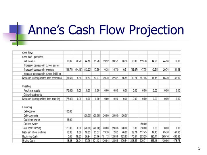 Anne's Cash Flow Projection