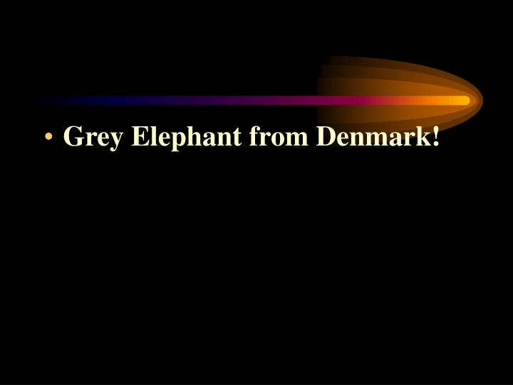 Grey Elephant from Denmark!