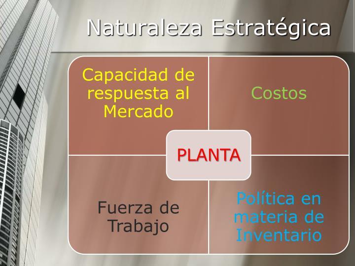 Naturaleza Estratégica