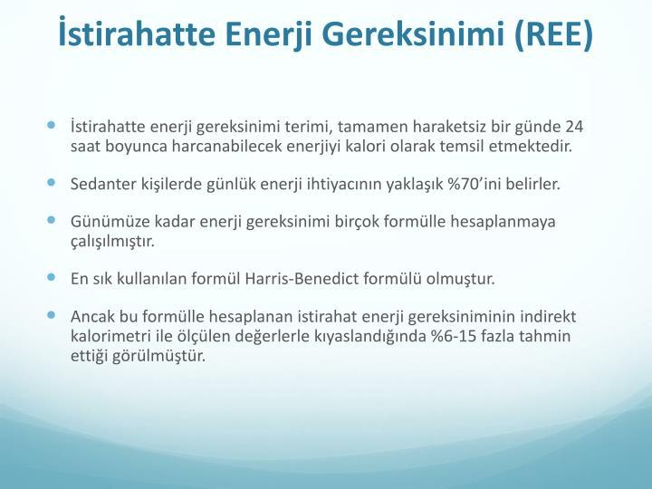 İstirahatte Enerji Gereksinimi (REE)