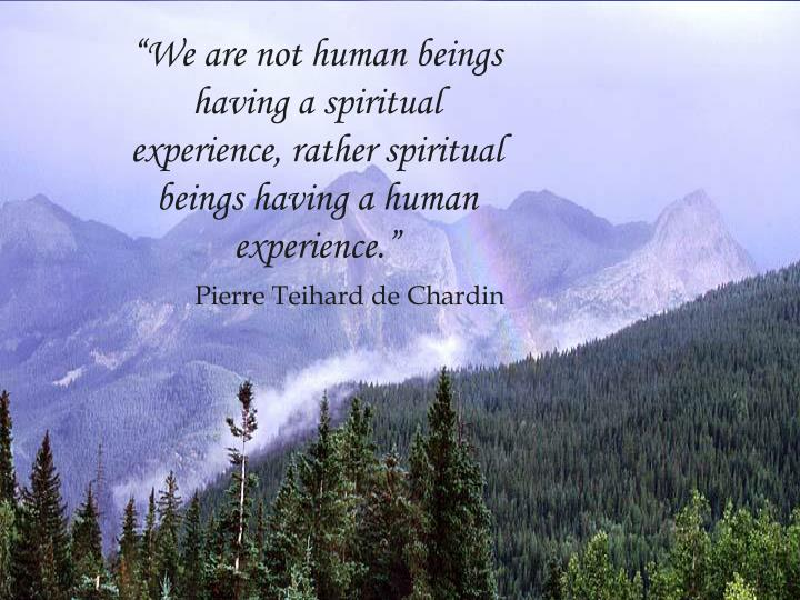 """""""We are not human beings"""