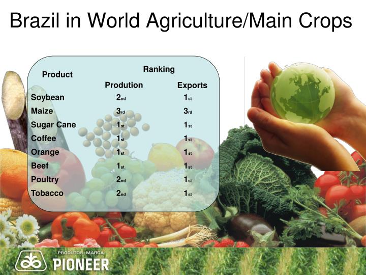 Brazil in World Agriculture/Main Crops