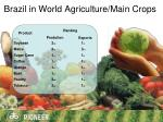 brazil in world agriculture main crops