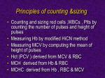 principles of counting sizing