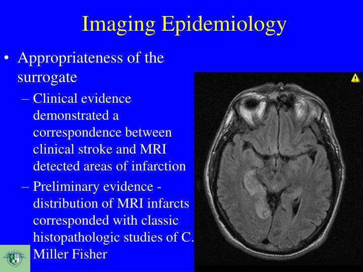 Imaging Epidemiology