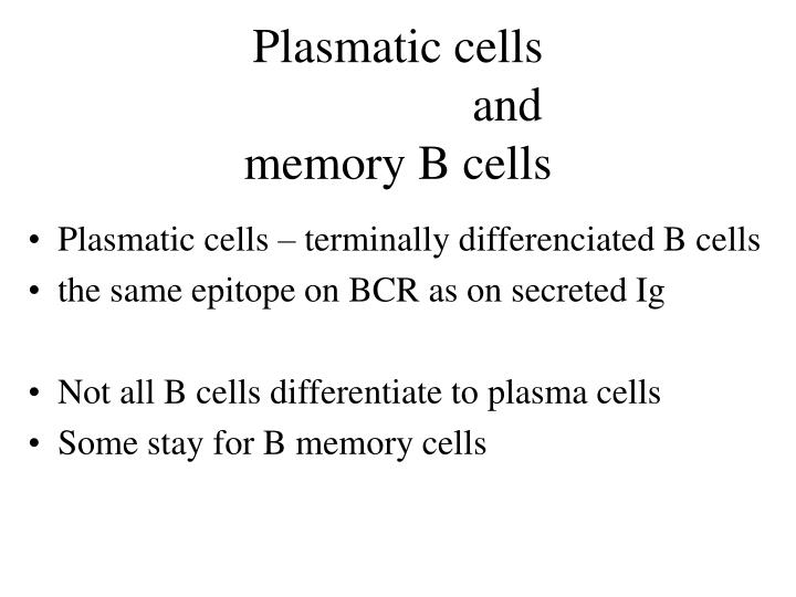 Plasmatic cells