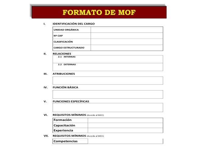 FORMATO DE MOF