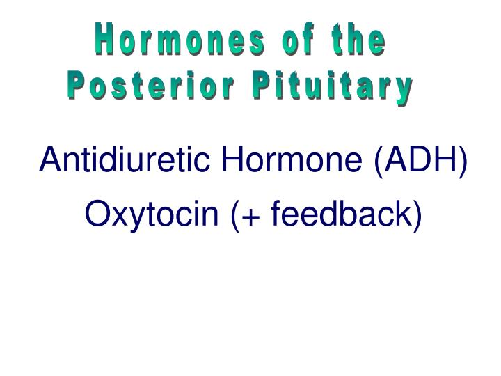 Hormones of the