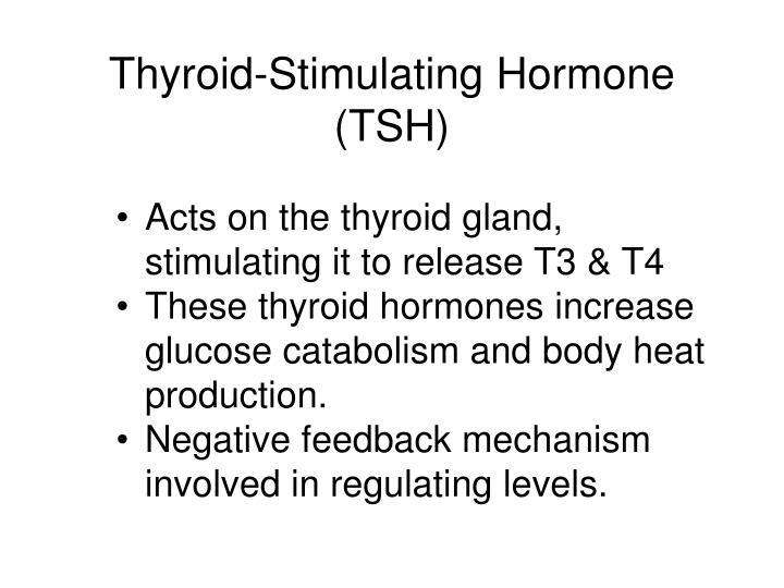 Thyroid-Stimulating Hormone (TSH)