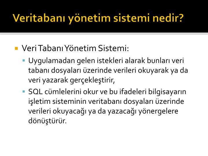 Veritabanı yönetim sistemi nedir?