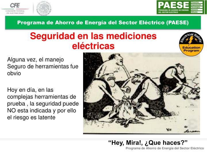 Programa de Ahorro de Energía del Sector Eléctrico (PAESE)