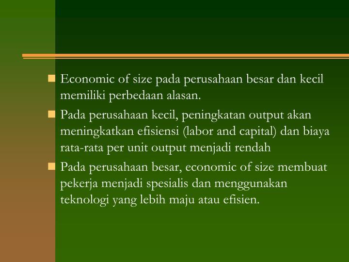 Economic of size pada perusahaan besar dan kecil memiliki perbedaan alasan.