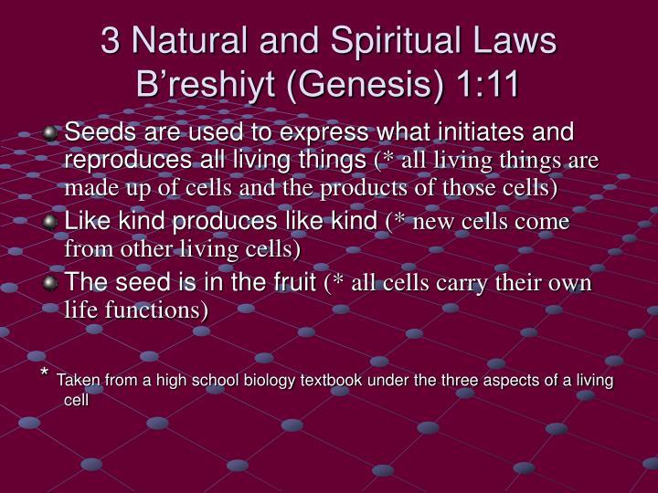 3 Natural and Spiritual Laws B'reshiyt (Genesis) 1:11