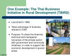 one example the thai business initiative in rural development tbird