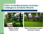 pda s profit maximization activities cabbages condoms resorts