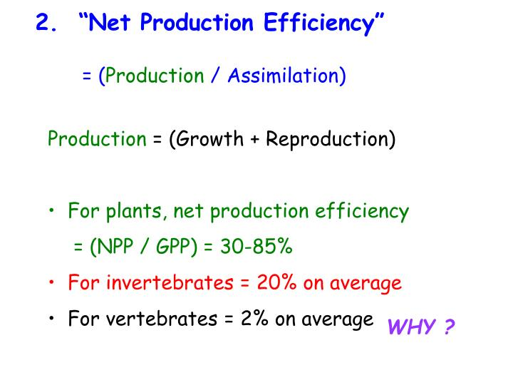 "2.  ""Net Production Efficiency"""