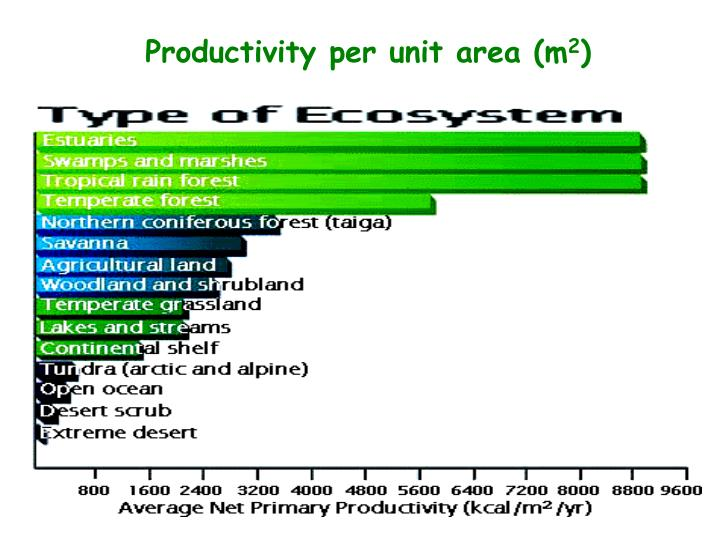 Productivity per unit area (m