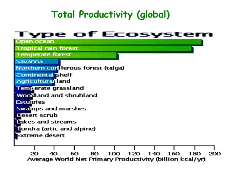 Total Productivity (global)