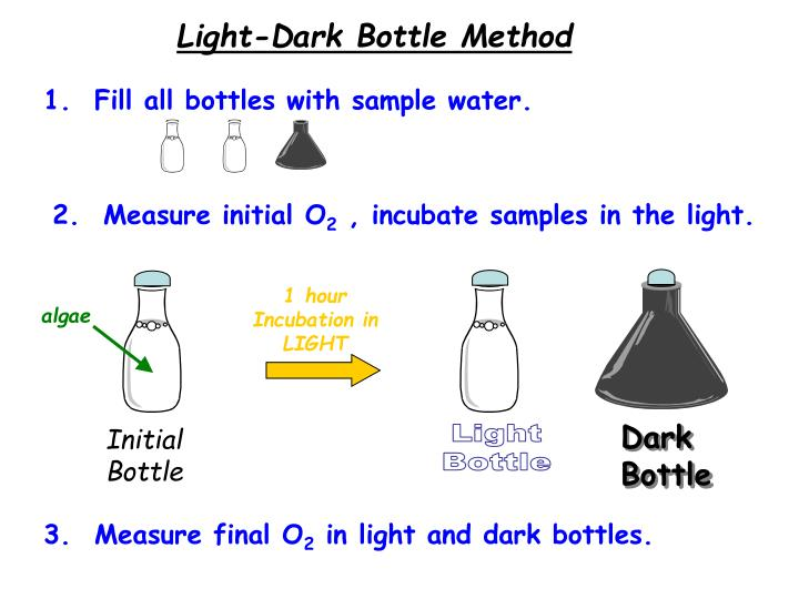 Light-Dark Bottle Method
