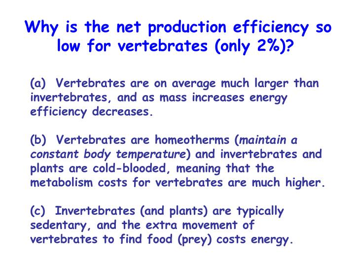 Why is the net production efficiency so low for vertebrates (only 2%)?