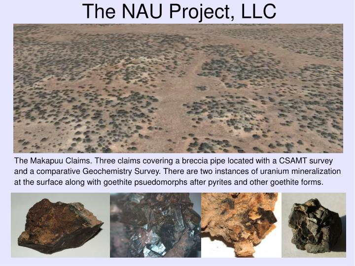 The nau project llc