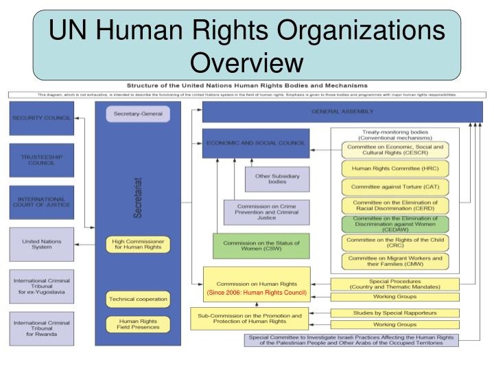 UN Human Rights Organizations