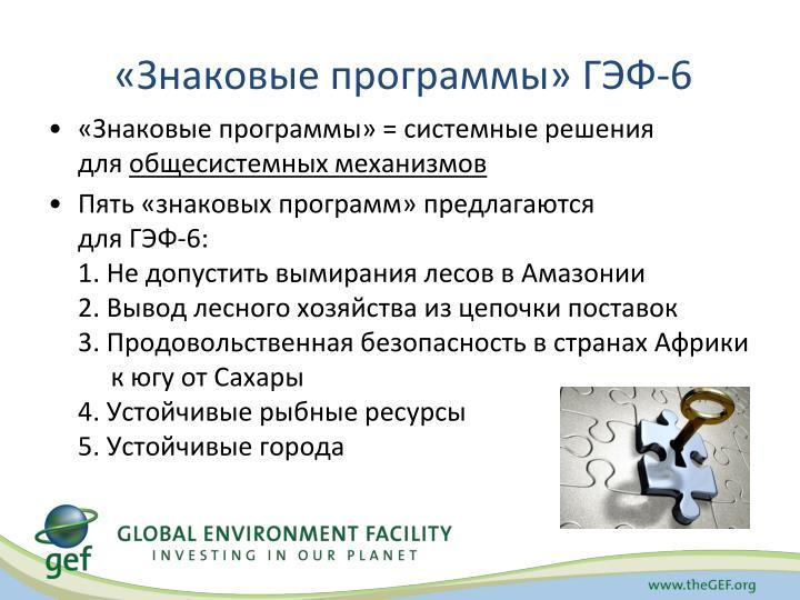 «Знаковые программы» ГЭФ-6
