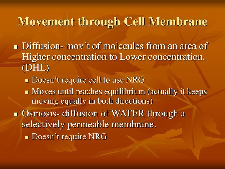 Movement through Cell Membrane