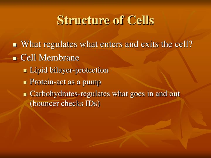 Structure of Cells