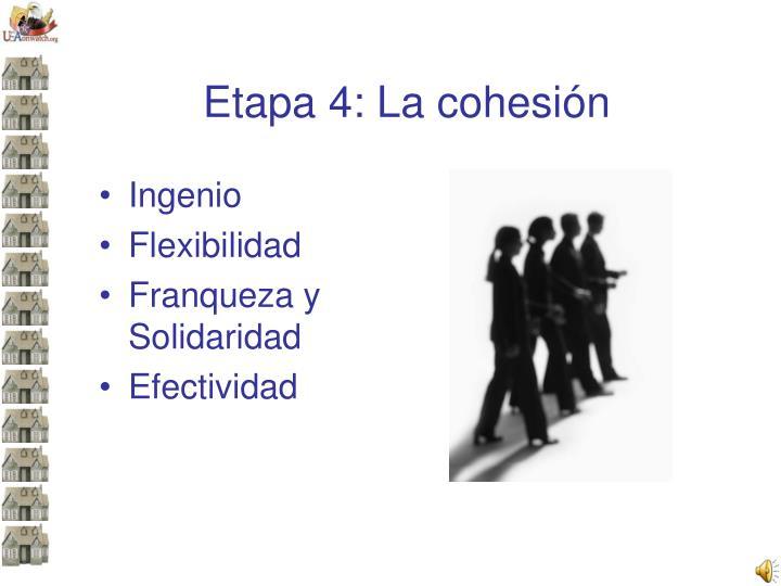 Etapa 4: La cohesión