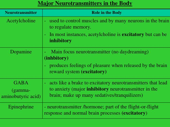 Major Neurotransmitters in the Body