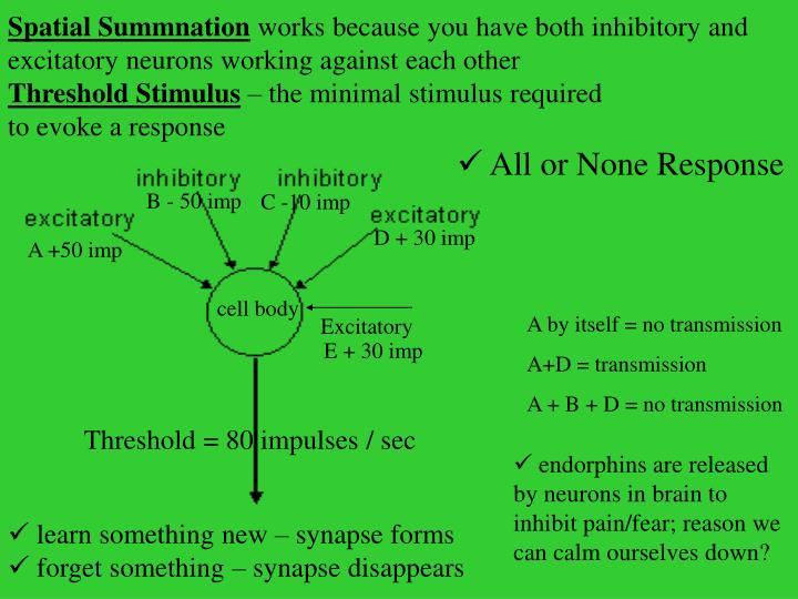 Spatial Summnation