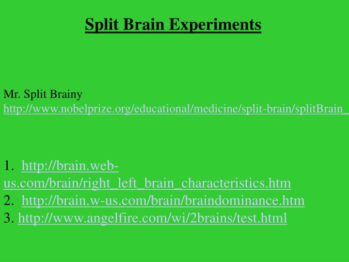 Split Brain Experiments