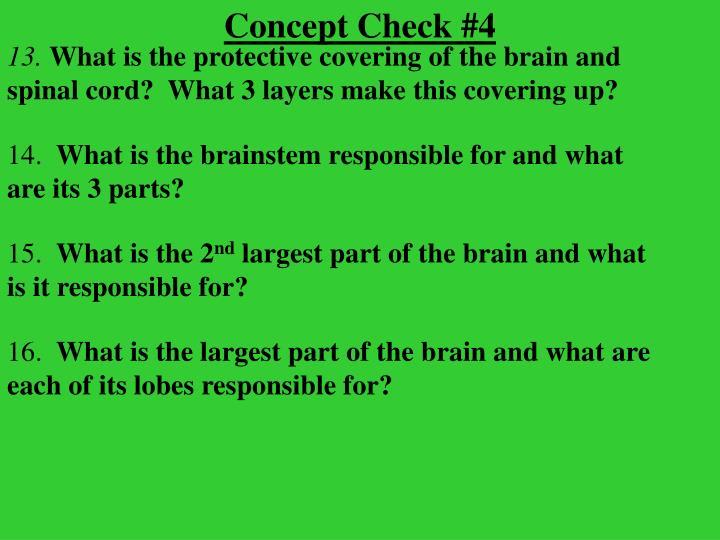 Concept Check #4