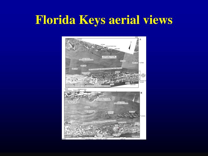 Florida Keys aerial views