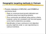 geographic targeting methods in vietnam
