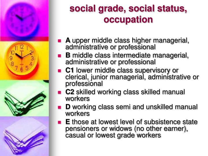 social grade, social status, occupation