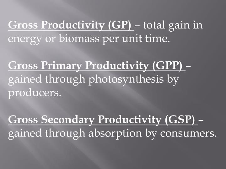 Gross Productivity (GP)