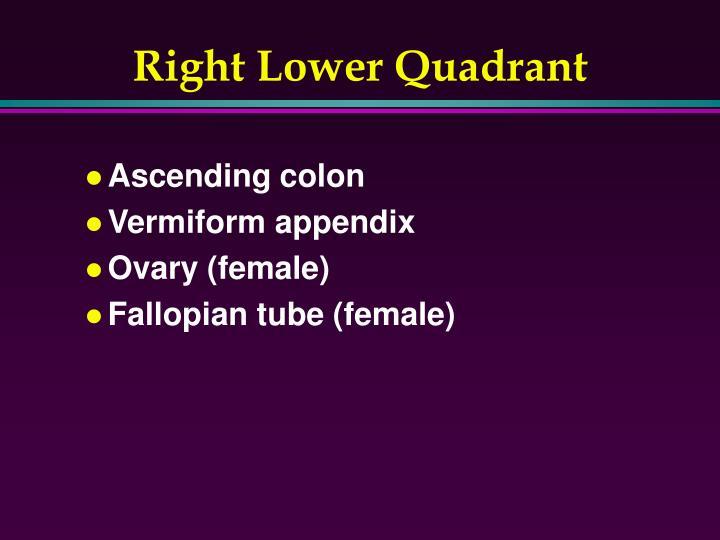 Right Lower Quadrant