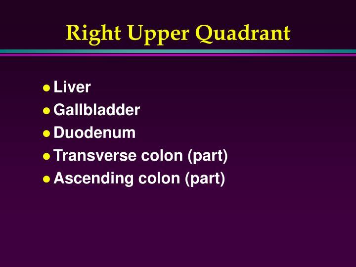 Right Upper Quadrant