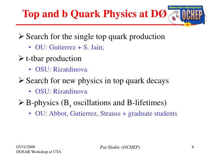 Top and b Quark Physics at D