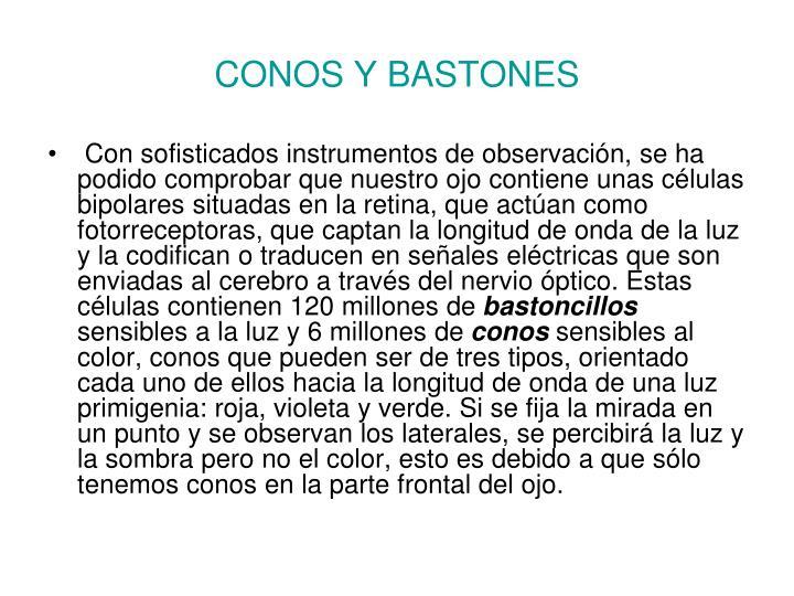 CONOS Y BASTONES