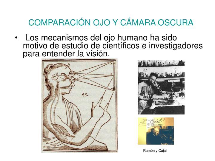 COMPARACIÓN OJO Y CÁMARA OSCURA