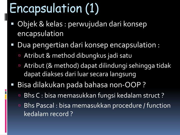 Encapsulation (1)