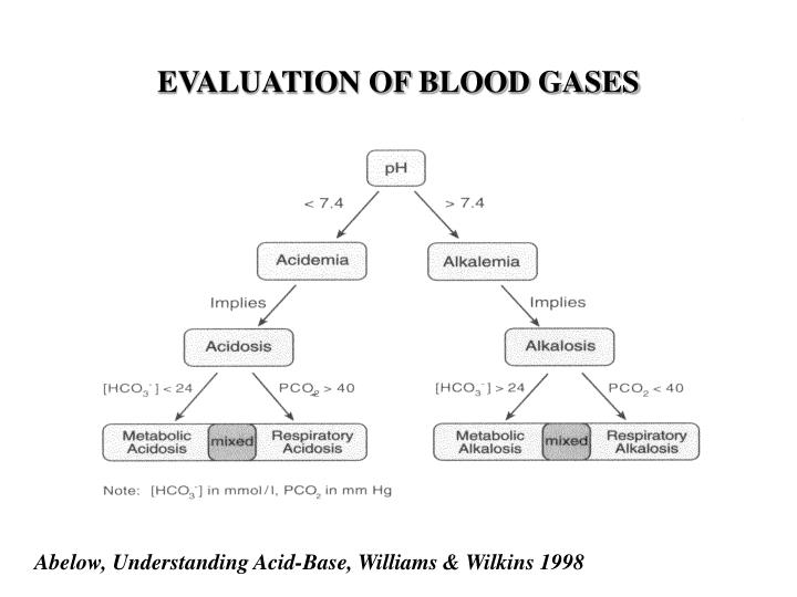 EVALUATION OF BLOOD GASES