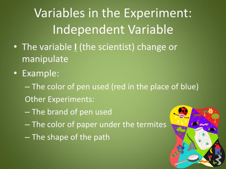 Variables in the Experiment: Independent Variable