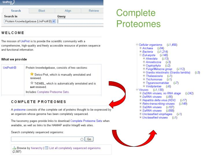 Complete 						Proteomes