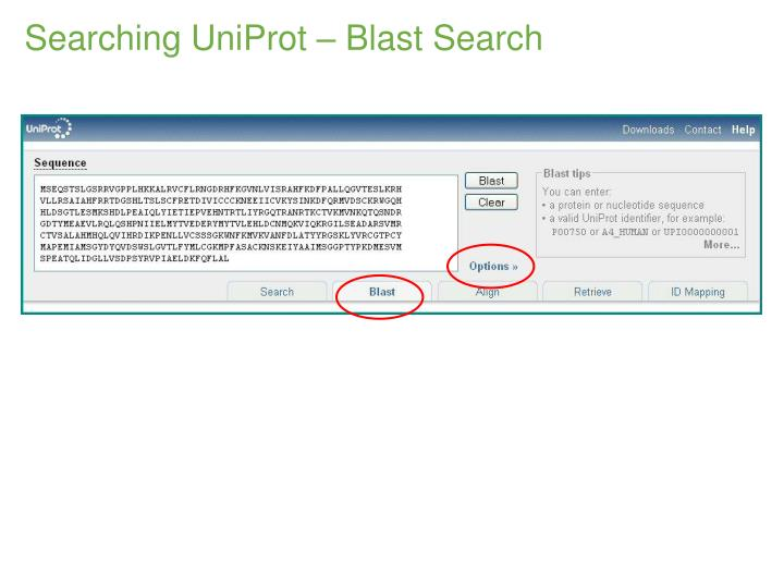Searching UniProt – Blast Search